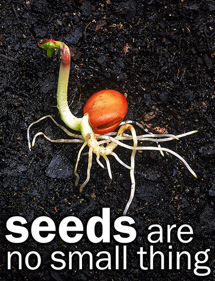 The freedom of our seeds is our freedom of our food, our communities and our life...