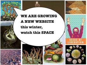 growing a website