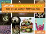 Freedom Seed Bank Logo