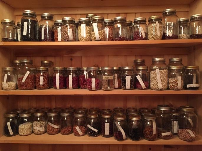 Heirloom Seed Sanctuary